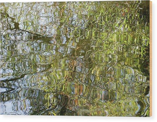 Water Reflection_65_17 Wood Print