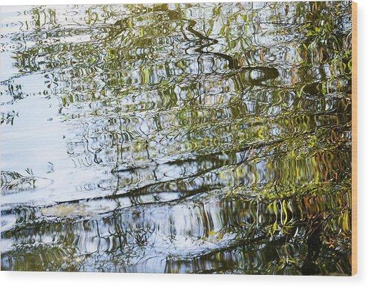 Water Reflection_74_17 Wood Print