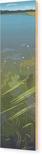 Water Weeds Wood Print by Marian Federspiel