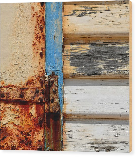 Weathered Wood Print by Sabina D'Antonio