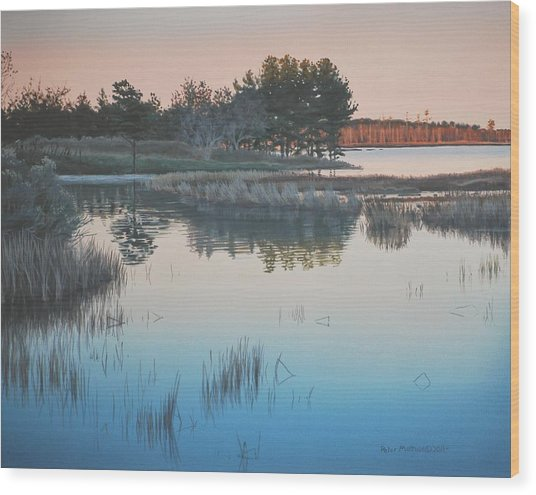 Wetland Reverie Wood Print