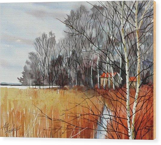 Wetlands Edge Wood Print by Art Scholz