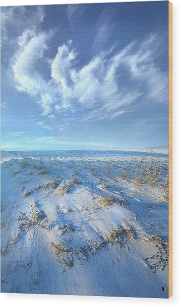 Wood Print featuring the photograph While Time Stands Still by Phil Koch