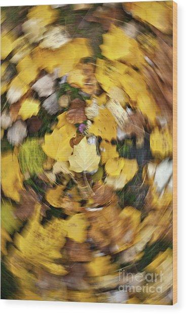 Whirlpool Of Autumn Wood Print