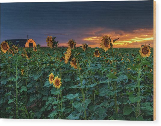 Wood Print featuring the photograph Whispers Of Summer by John De Bord