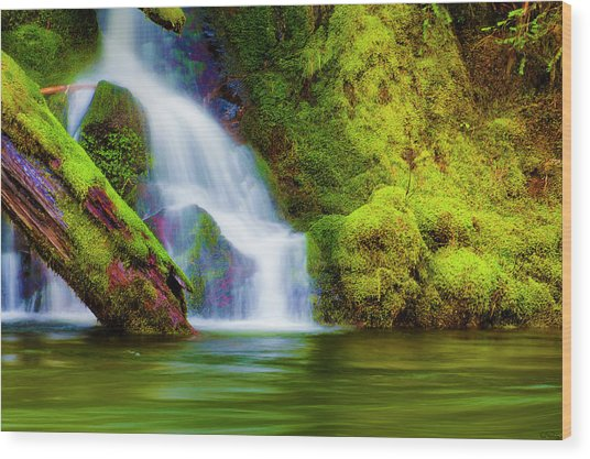 White Cascade Into The Salmon River Wood Print