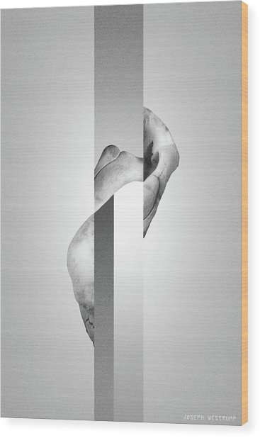 White Endobrume - Surreal Abstract Elephant Bone Collage With Rectangles Wood Print