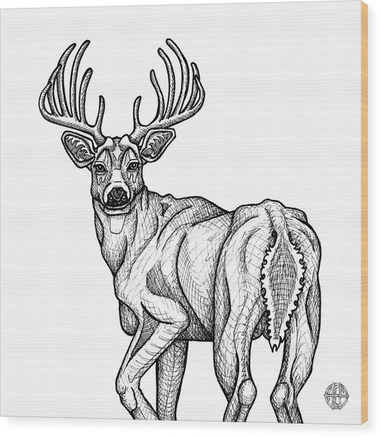White Tailed Buck Wood Print