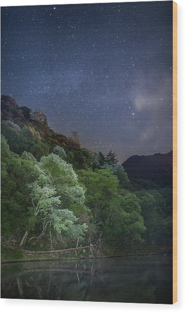 White Tree Under The Stars Wood Print