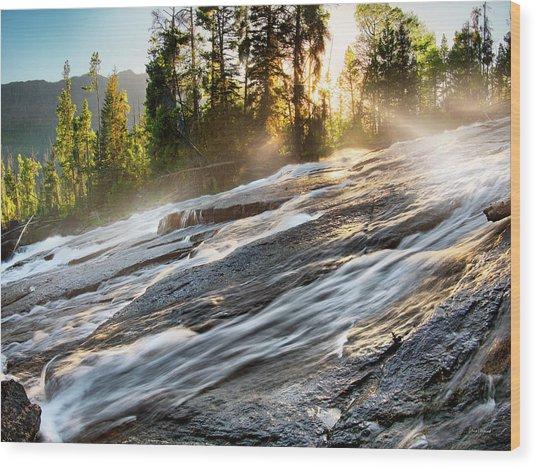 Wilderness River Wood Print by Leland D Howard