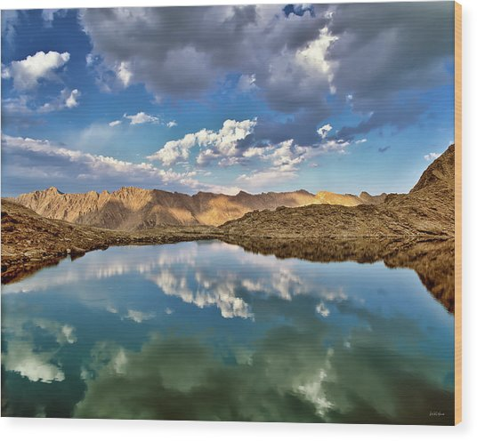 Wildhorse Lake Reflections Wood Print by Leland D Howard