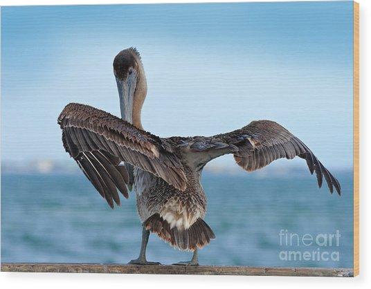 Wildlife Scene From Ocean. Brown Wood Print