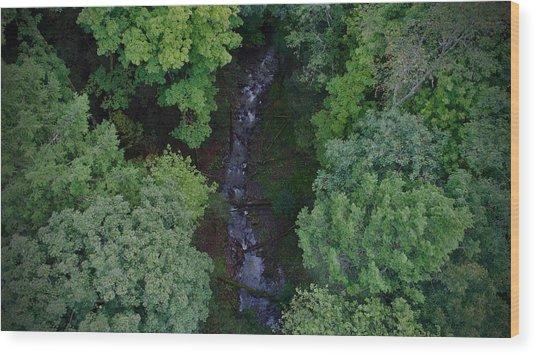 Willow Run Creek Wood Print