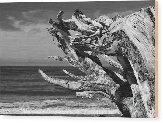 Wind Drift Wood Print