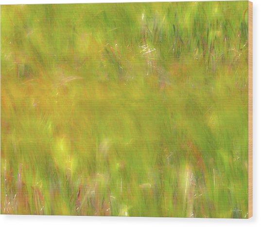 Wind Painting 4 Wood Print by Leland D Howard