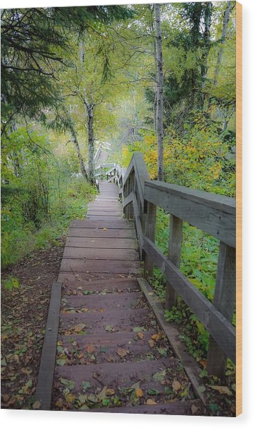 Winding Stairs In Autumn Wood Print