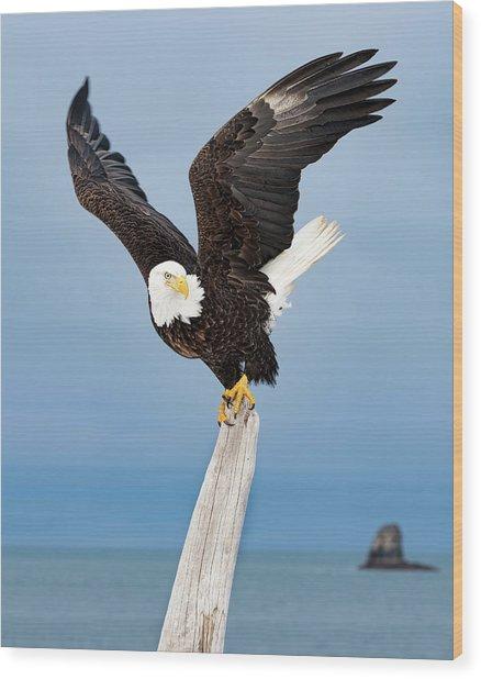 Winged Sentry Wood Print