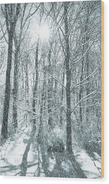 Winter Cold Wood Print by JAMART Photography