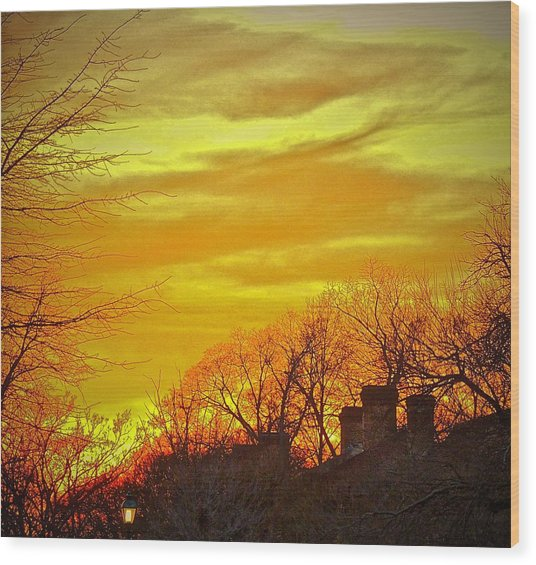 Winter Amber Wood Print