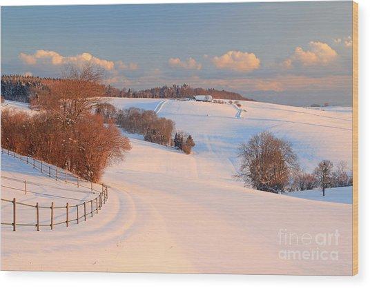 Winter Landscape Near The Village Of Wood Print
