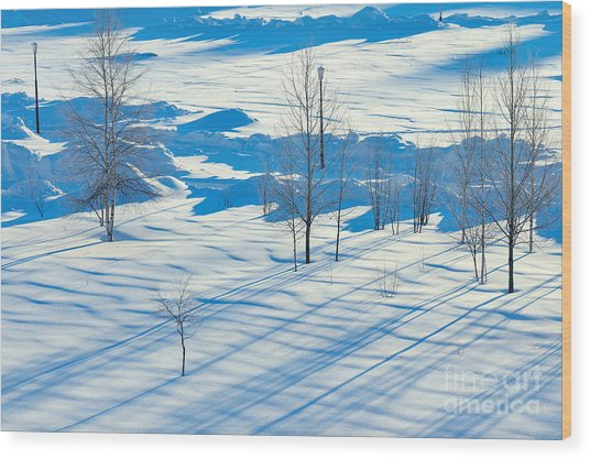 Winter Landscape. Sunset In The Winter Wood Print