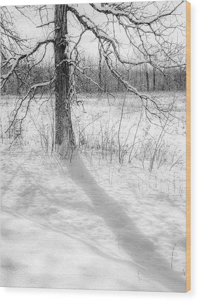 Winter Simple Wood Print
