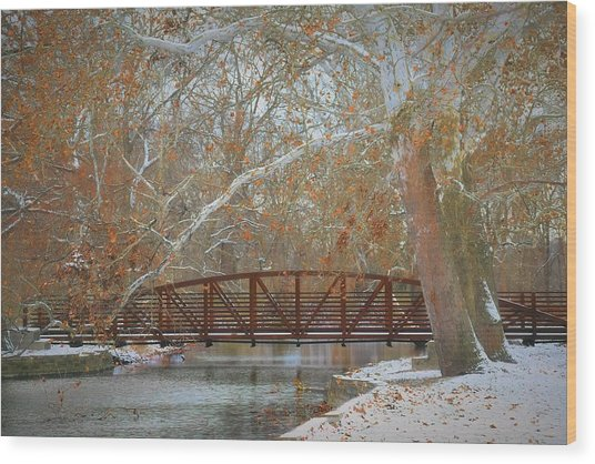 Winter Sycamores Wood Print