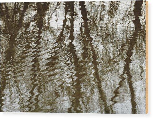 Winter Water Reflection - 5059-19 Wood Print