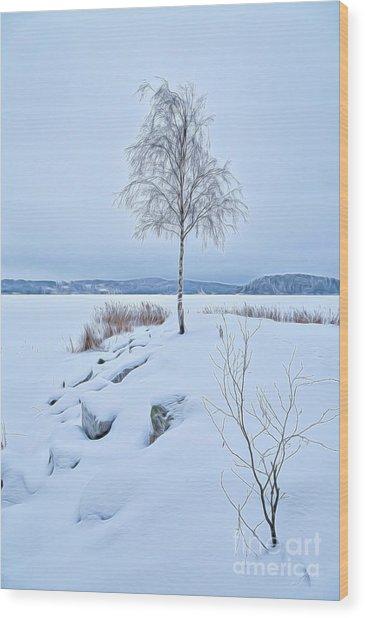 Winterland 10 Wood Print