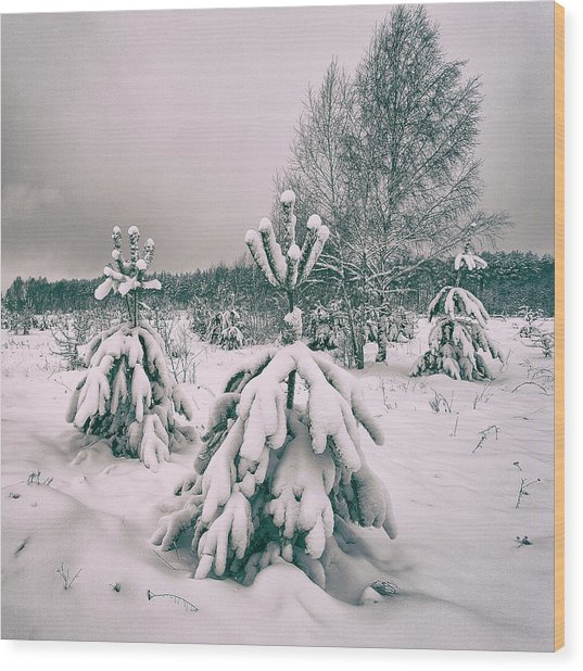 Wood Print featuring the photograph Winter's Coming. Horytsya, 2018. by Andriy Maykovskyi