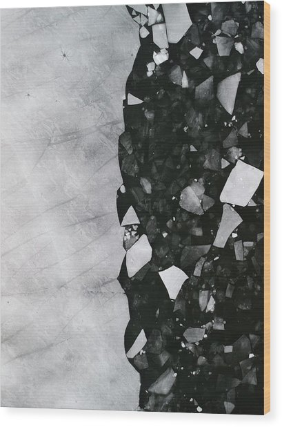 Winters Edge - Aerial Photography Wood Print
