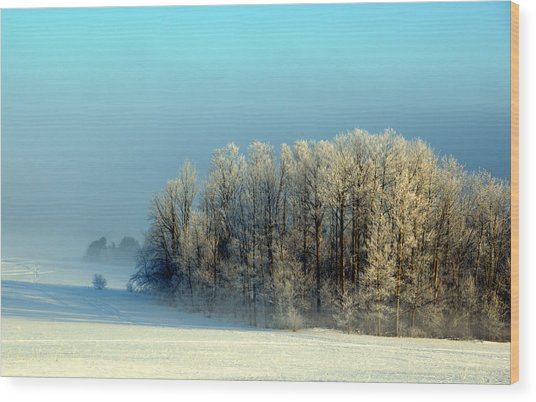 Winter's Heavy Frost Wood Print