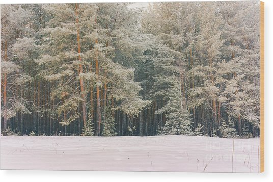 Wintry Landscape Scenery With Flat Wood Print