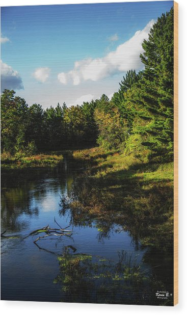 Wisconsin Waterscape Wood Print