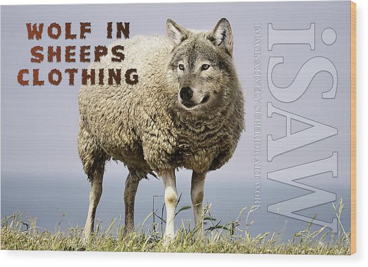 Wood Print featuring the digital art Wolf In Sheeps Clothing by ISAW Company