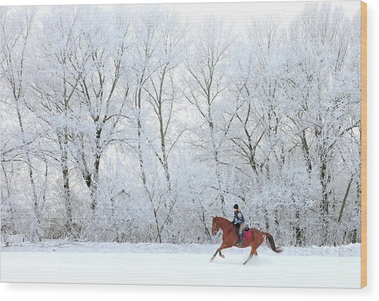 Woman And Her Horse Cantering In Fresh Wood Print