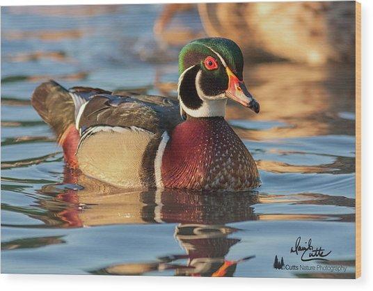 Wood Duck 4 Wood Print