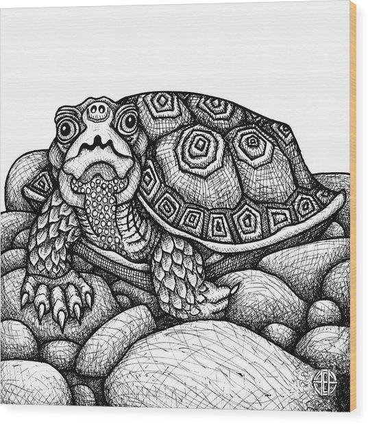 Wood Turtle Wood Print
