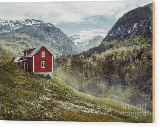 Wooden Cottage In The Valley. Flowers Wood Print