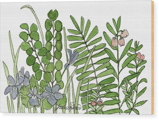 Woodland Ferns Violets Nature Illustration Wood Print