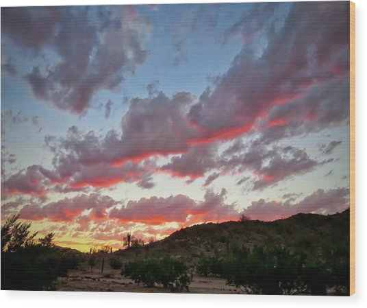 Wood Print featuring the photograph Y Cactus Sunset  11 by Judy Kennedy