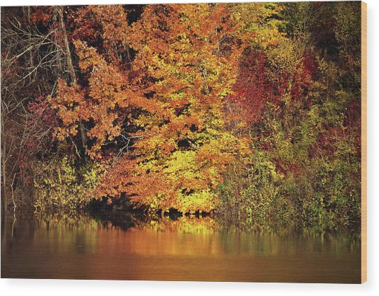 Wood Print featuring the photograph Yellow Autumn Leaves by Mike Murdock