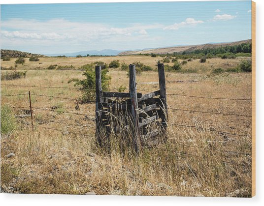 Yellow Grass And Fence Anchor Wood Print