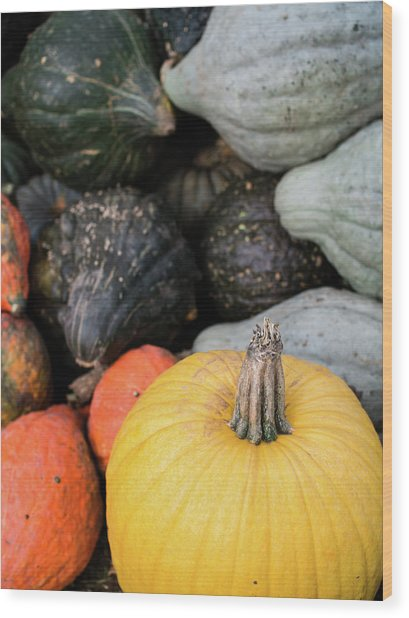 Wood Print featuring the photograph Yellow Pumpkin by Whitney Leigh Carlson