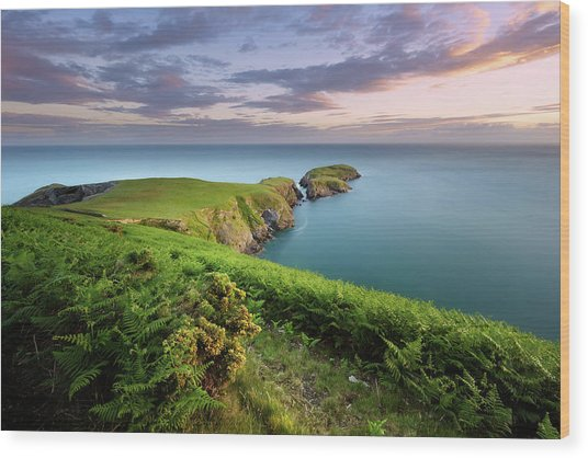 Wood Print featuring the photograph Ynys Lochtyn Summer Sunrise by Elliott Coleman