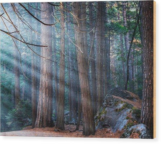 Wood Print featuring the photograph Yosemite Sunbeams II by Rand