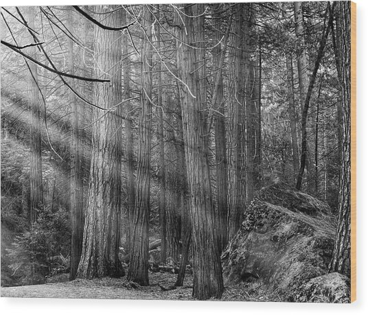Wood Print featuring the photograph Yosemite Sunbeams by Rand