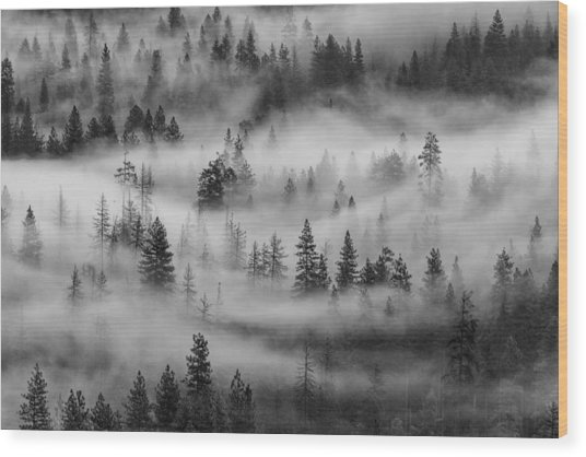 Wood Print featuring the photograph Yosemite Valley Fog by Rand