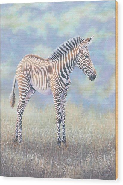 Young Grevy Zebra Wood Print