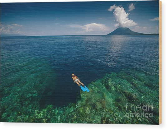 Young Lady Snorkeling Over The Reef Wood Print by Dudarev Mikhail